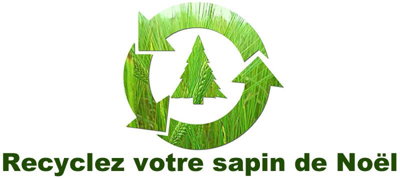 recyclez-votre-sapin